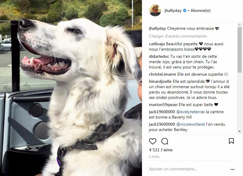 Cheyenne la chienne de Johnny