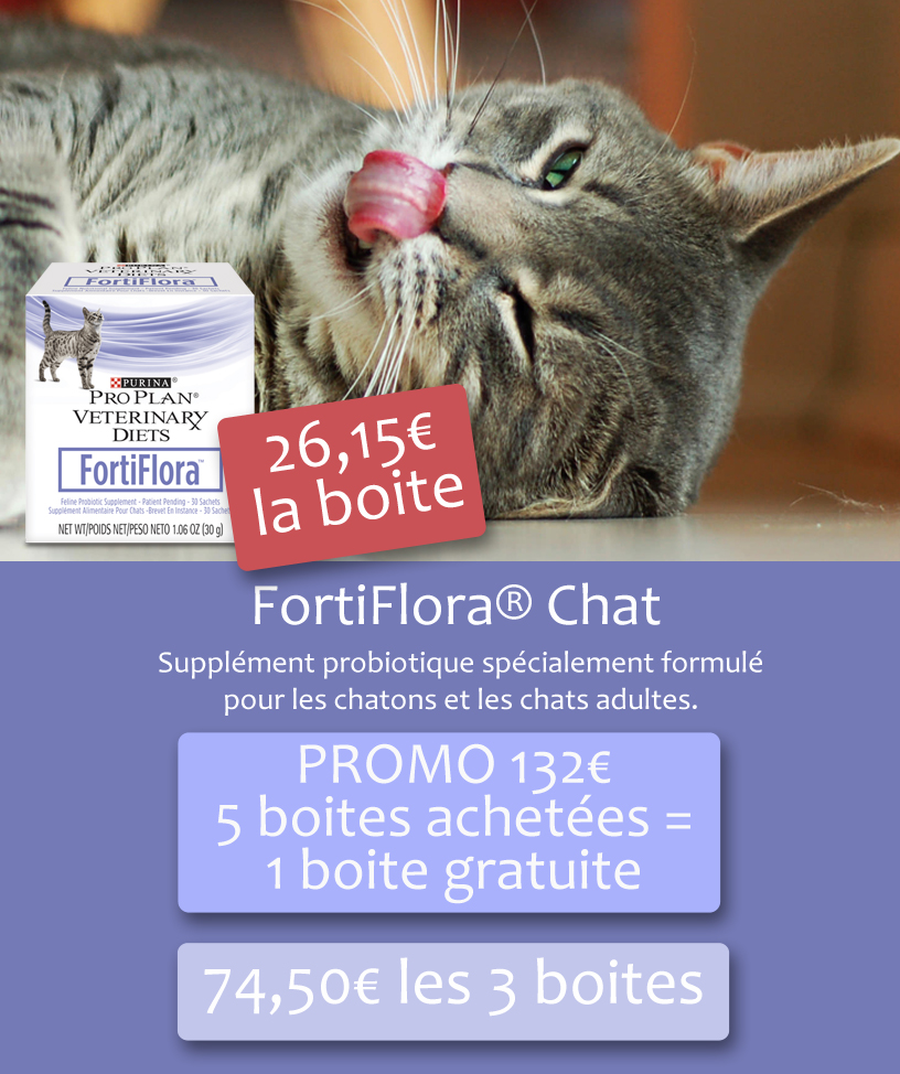 fortiflora-chat