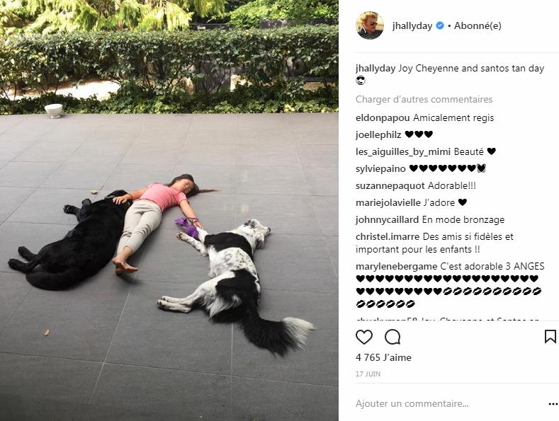 Jade Hallyday et ses chiens