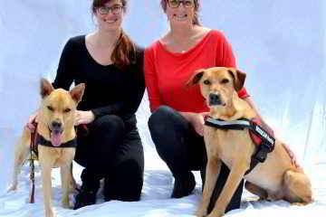 Les chiens renifleurs de punaises de lit et leurs maîtresses