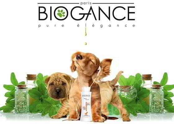 Shampoings bio pour chiens et chats Biogance Organissime