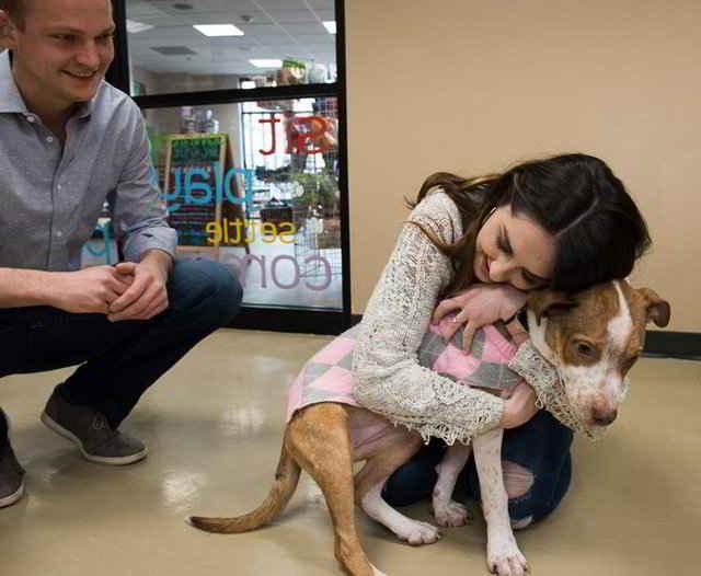 L'adoption de Lizzie
