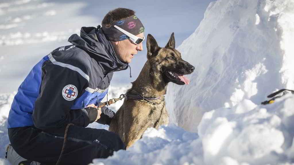 Sonni et son maitre chien Eric