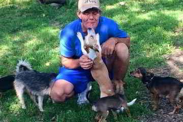 Steve et ses chiens