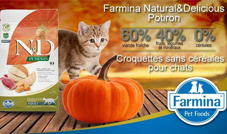 Croquettes sans céréales Farmina Potiron pour chats