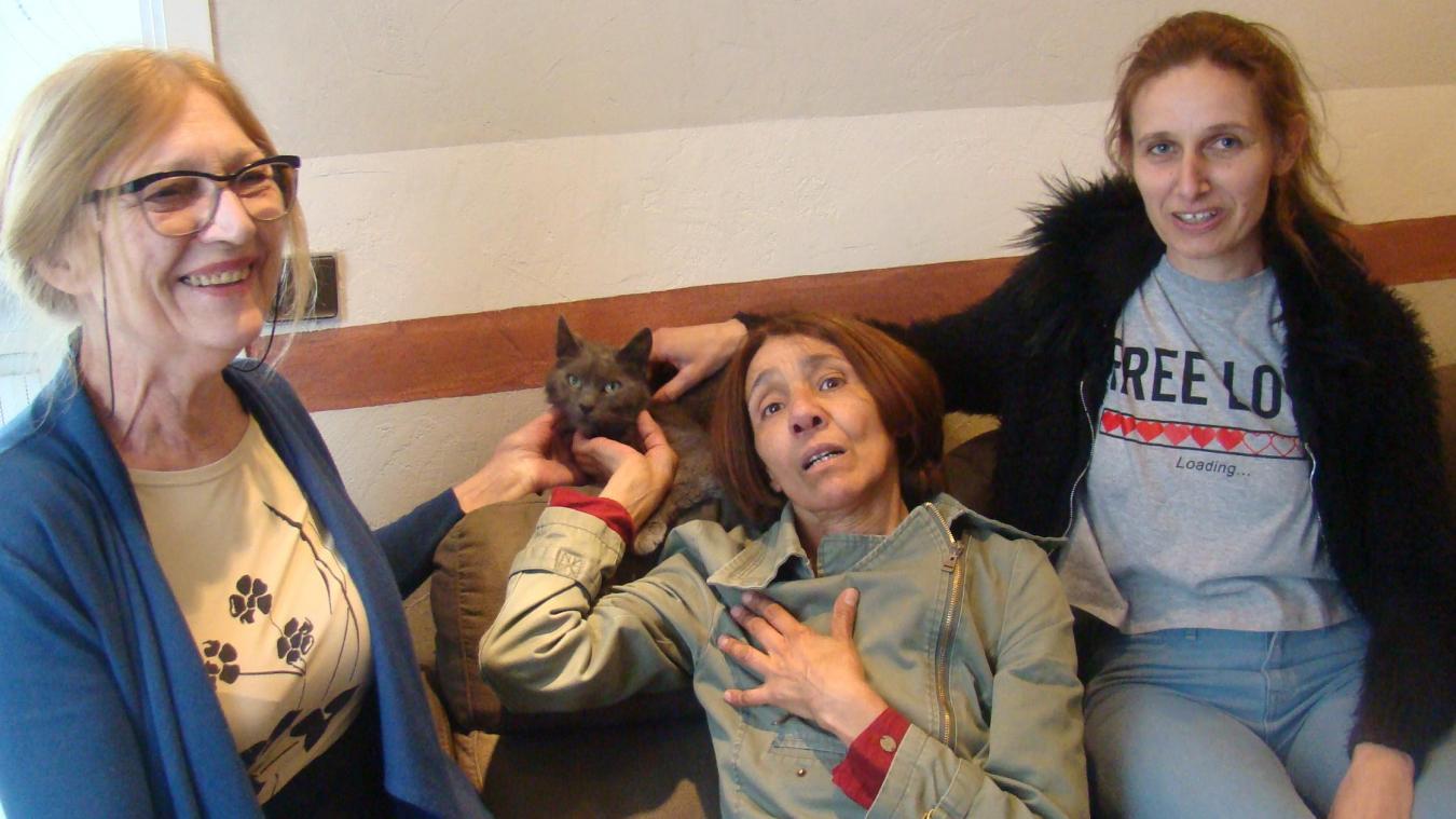 Le chat Titoune a retrouvé sa famille