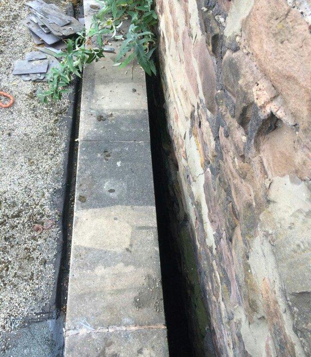 Le fossé où se trouve le chaton