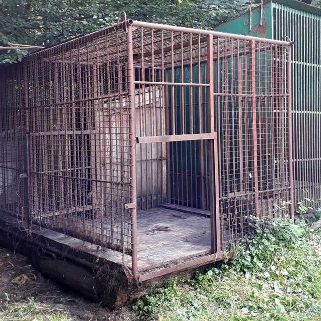 La cage de Kvitka