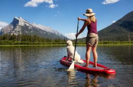 cani paddle