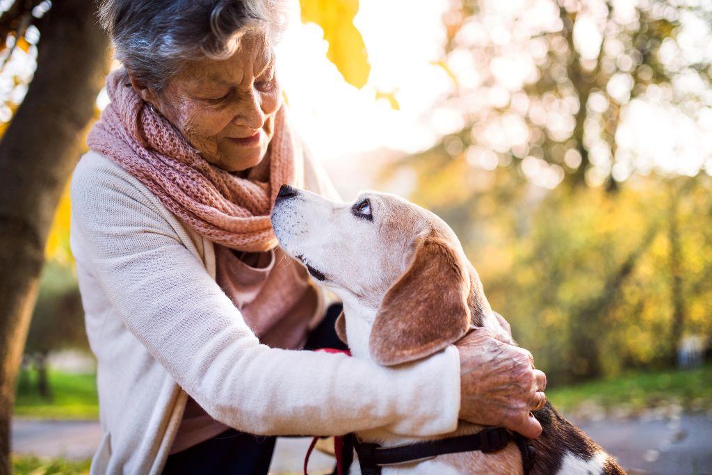 zoothérapie pour personne âgées